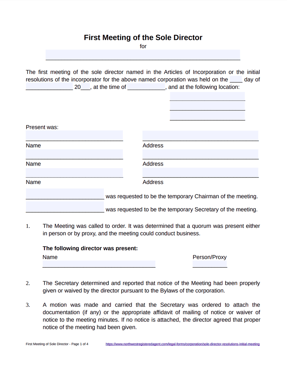 Sole Director First Meeting Minutes Template - Free Download